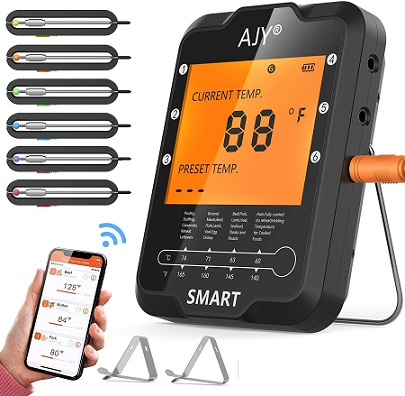 Best _Bluetooth Meat Thermometer